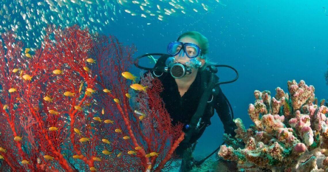 Concurso da ONU busca inovações que combatam poluição nos oceanos