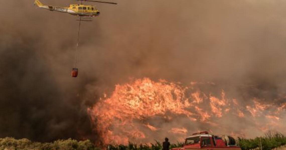 Crise climática provoca incêndios, ondas de calor e perda de biodiversidade