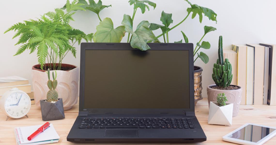 Mais verde no escritório para reduzir o estresse e elevar a produtividade
