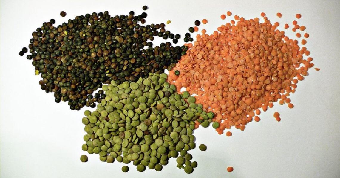 Em Dia dos Legumes, PNUMA destaca benefícios climáticos e comunitários do plantio do feijão