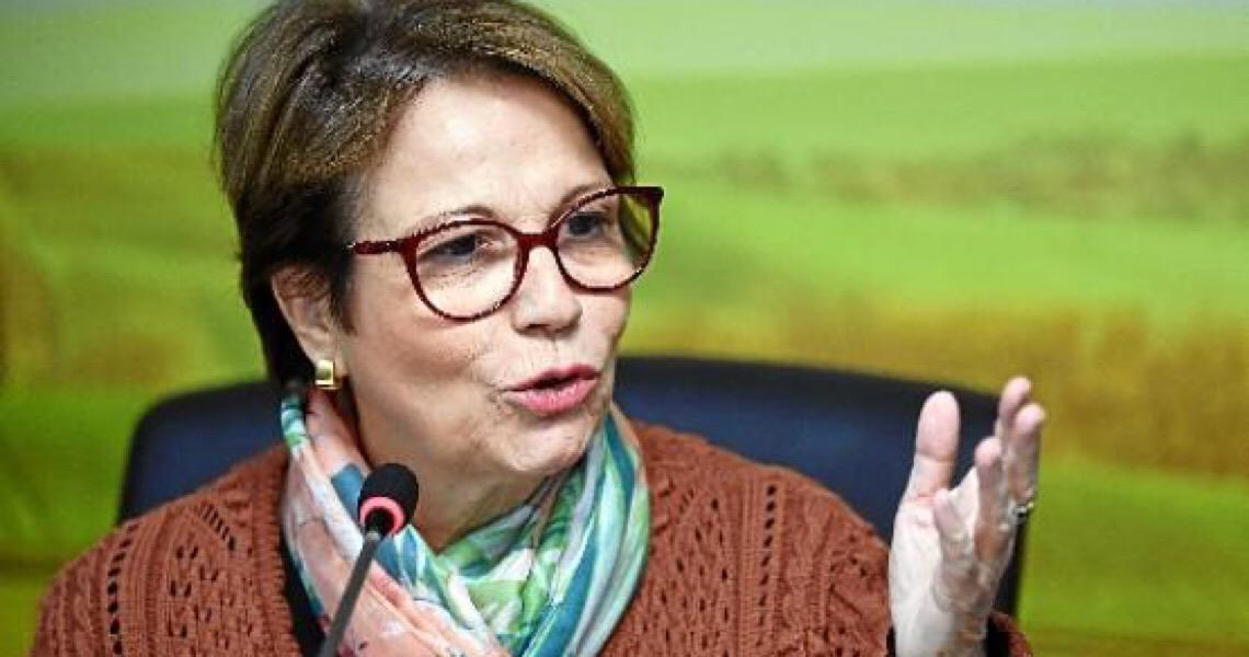 No meio da tragédia chineses procuram a ministra da Agricultura, Tereza Cristina