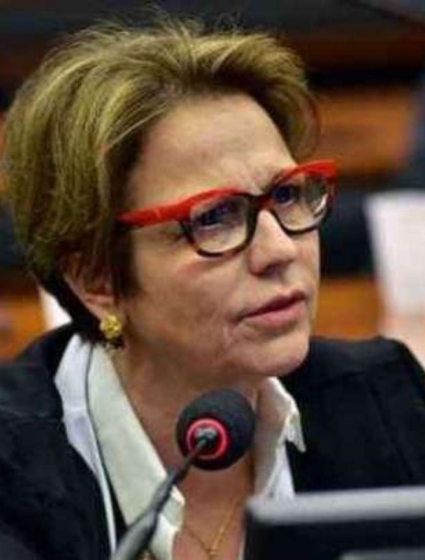 Podemos ter falhado em conter fronteira agrícola na Amazônia, diz ministra Tereza Cristina