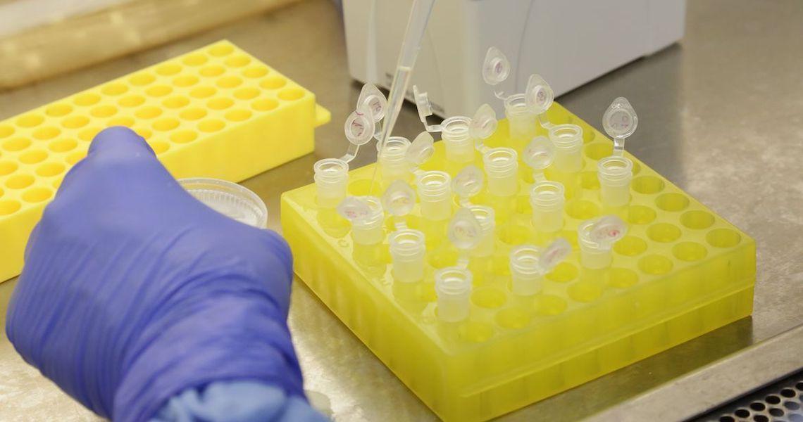 Anvisa descarta suspeita de coronavírus em navio no Porto de Santos