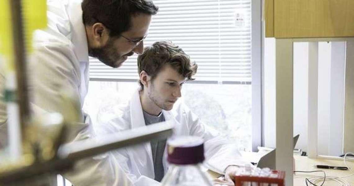 Cientistas fazem avanço rumo à vacina contra o coronavírus
