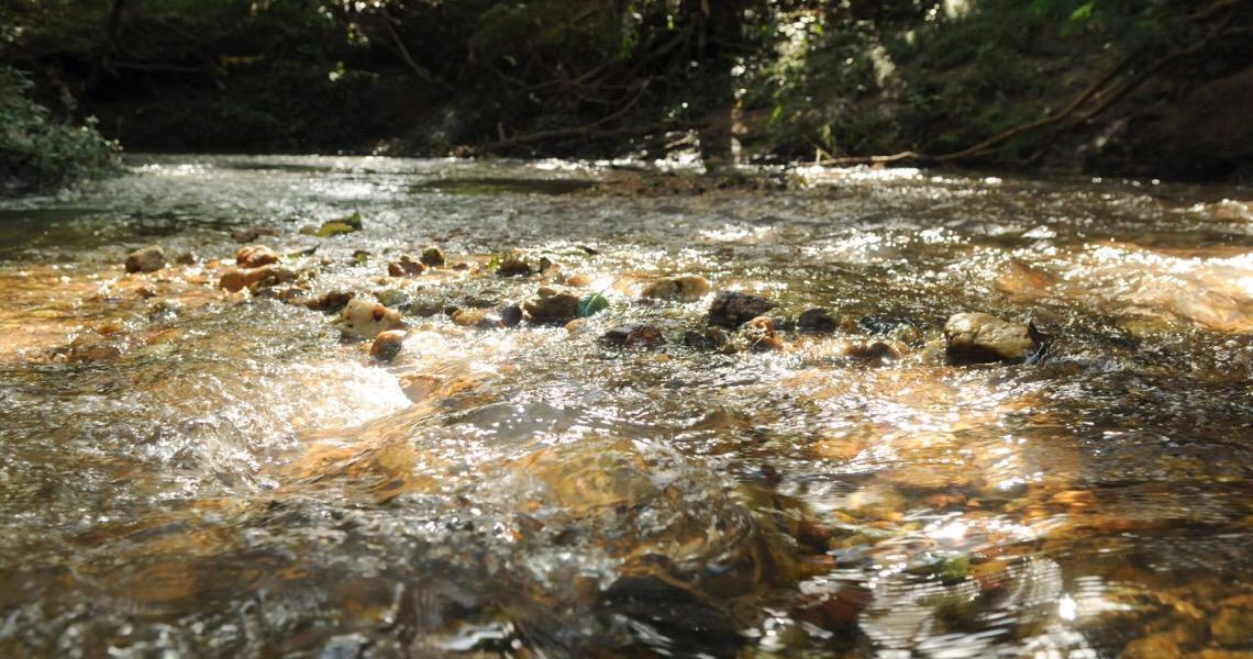 Bacia hidrográfica do Rio Preto será recuperada