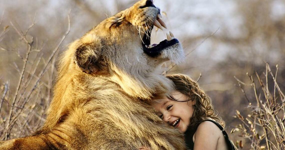 O Leão está de olho.  Tire suas dúvidas