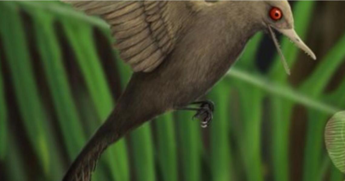 Menor dinossauro do mundo é encontrado preso em âmbar de 99 milhões de anos