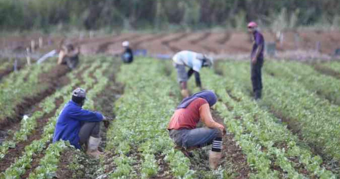 Governo do DF cancela pagamento de parcelas e reduz juros para pequenas empresas
