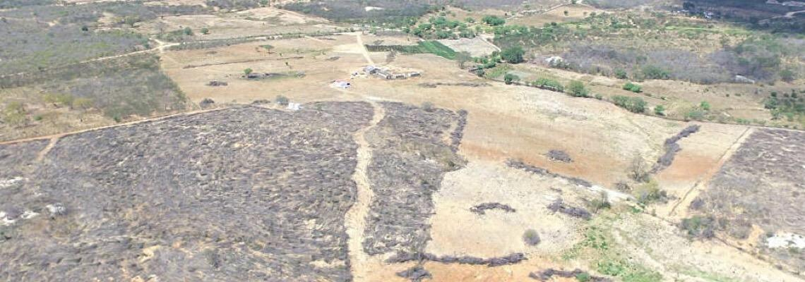Caatinga: Bioma que só existe no Brasil vai virar deserto?