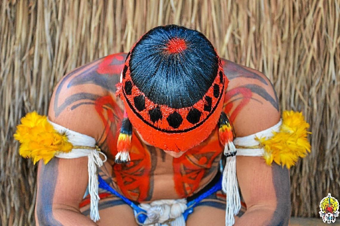 Tentativa de evitar genocídio indígena