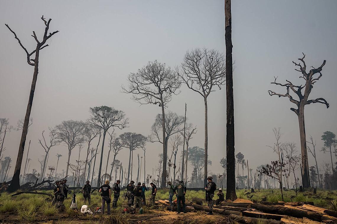 Grilagem na Amazônia, MP 910 escandaliza a sociedade