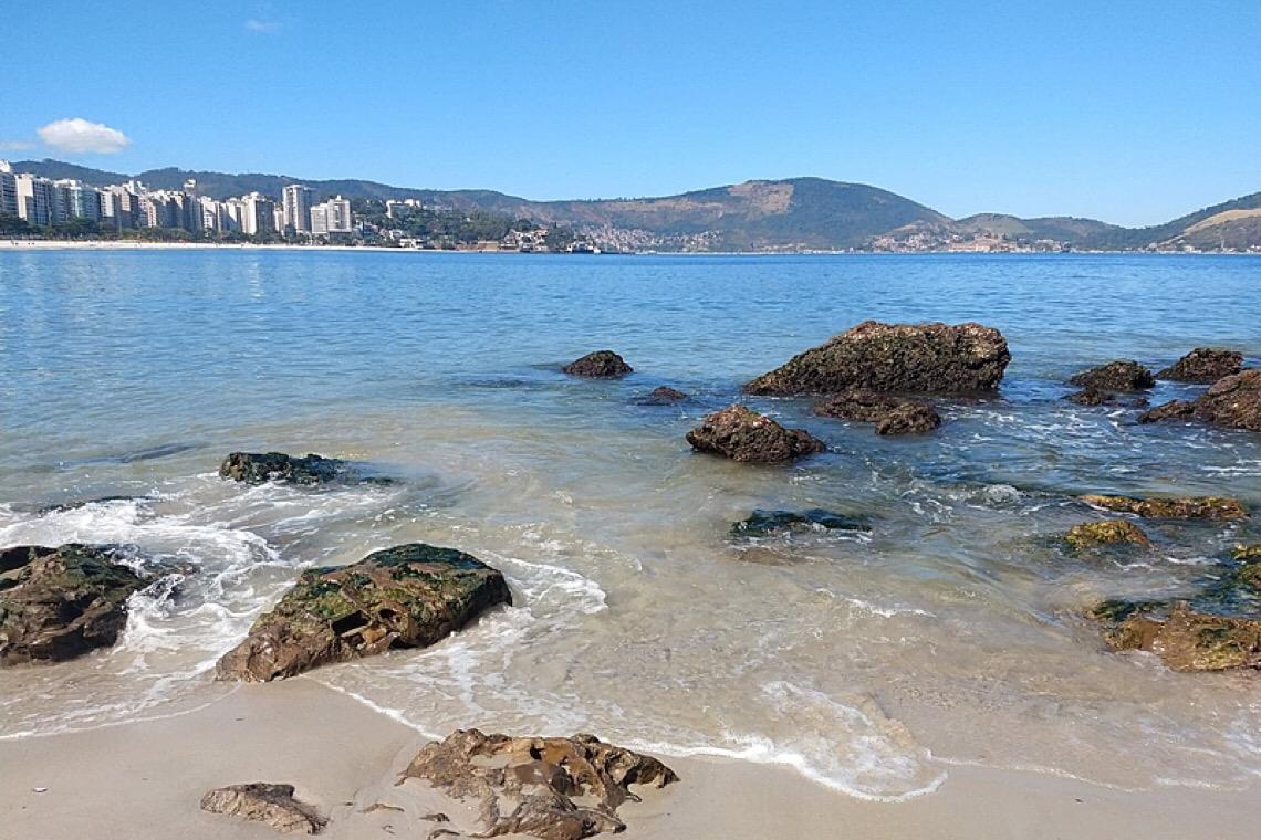 Águas claras e animais raros na Baía de Guanabara são efeitos da quarentena?