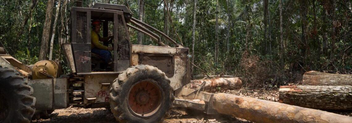 Quarenta empresas globais assinam carta contra 'PL da grilagem'