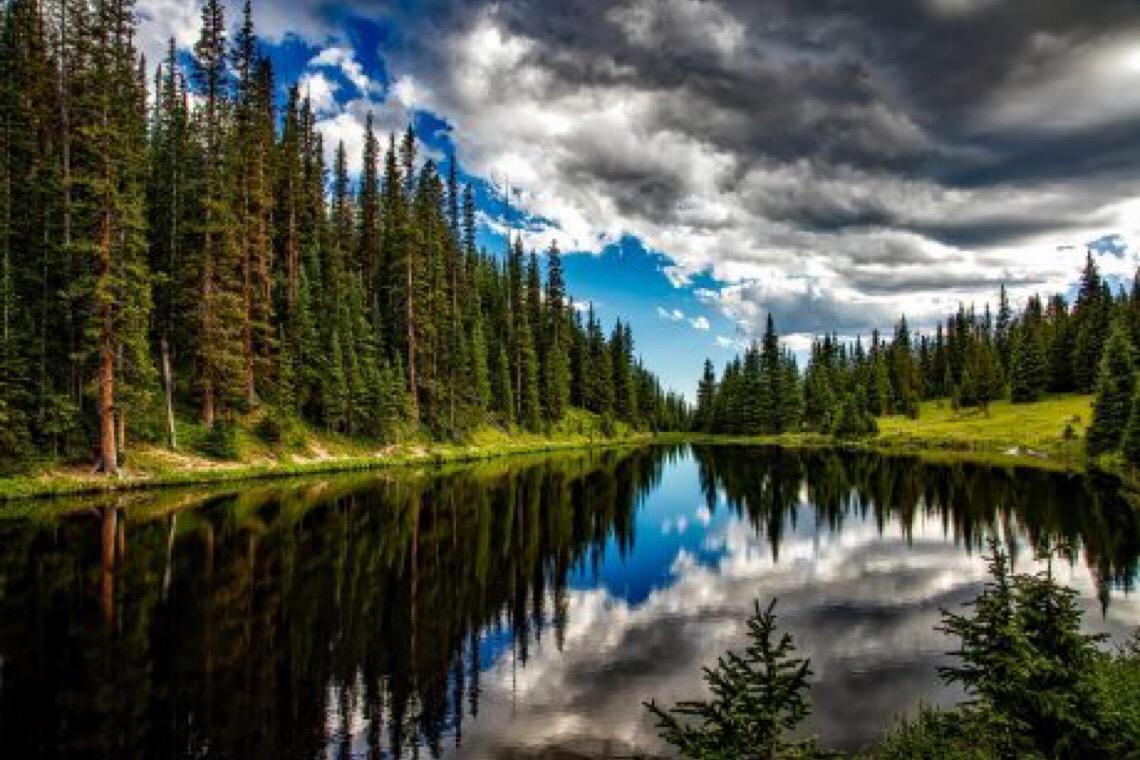 """""""A Natureza está nos mandando uma mensagem clara"""", diz ONU no dia do meio ambiente"""