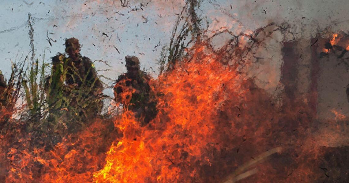 Ambientalista: Forças Armadas são importantes na Amazônia, mas entrosamento deixa a desejar
