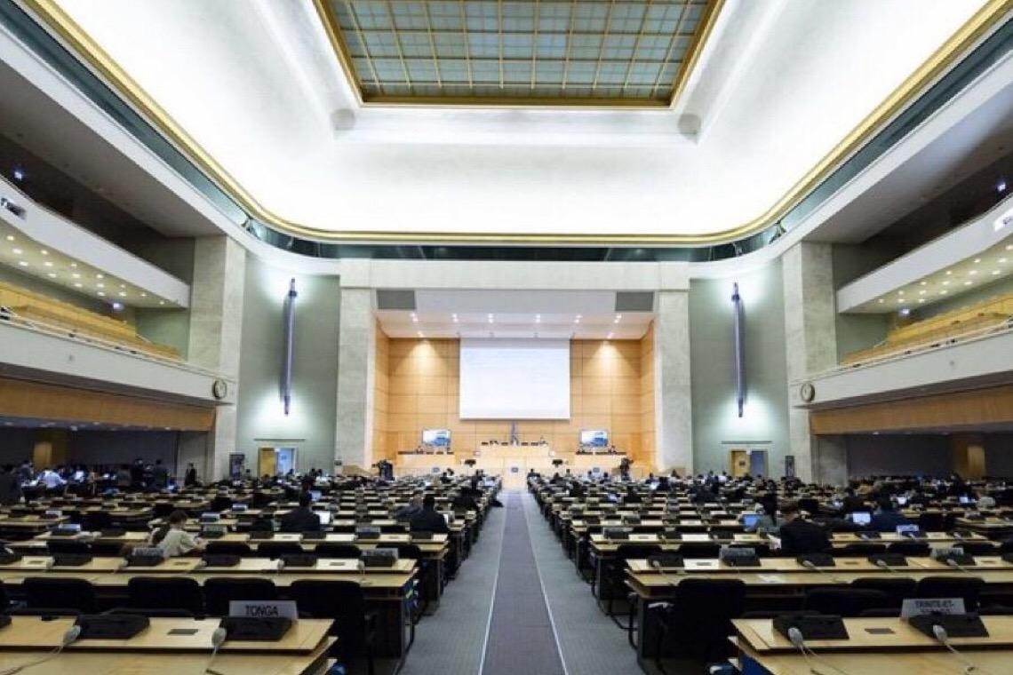 ONU fará relatório sobre relação entre racismo, violência e Caso Floyd