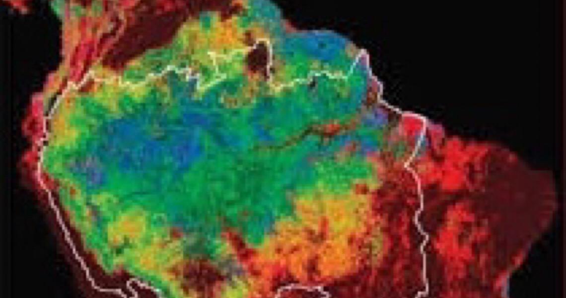 Brasil aumenta emissões de CO2 em 2020 enquanto o mundo diminui