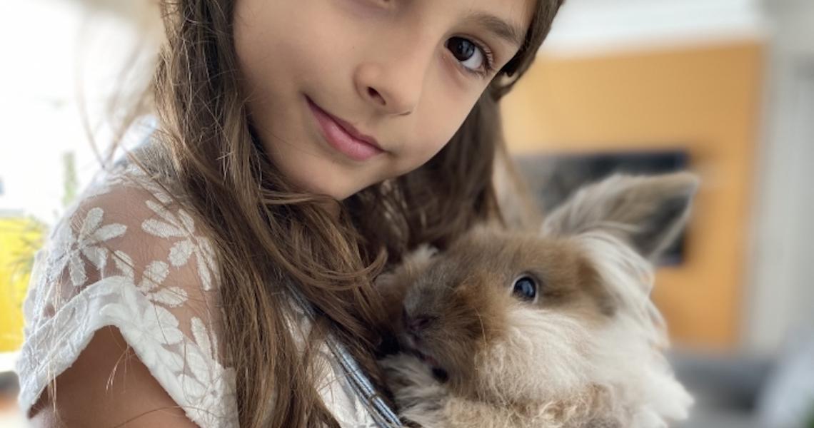 Coelho como pet: Quais os cuidados necessários?
