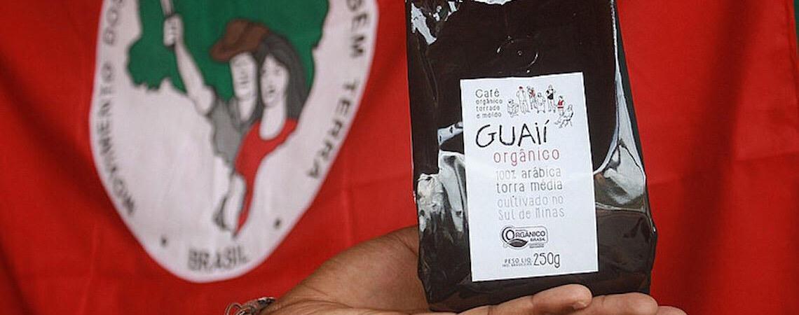 Dia Mundial do Café: Brasil tem opção produzida em quilombo e sem agrotóxico