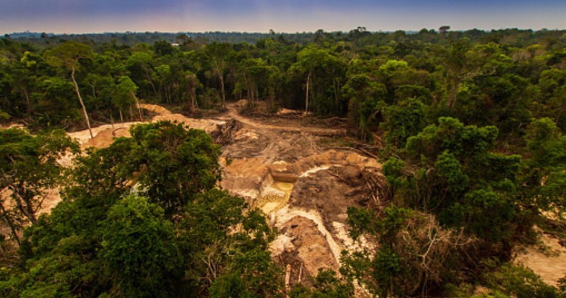 Em carta a Biden, senadores democratas dizem que Bolsonaro dá sinal verde a ação ilegal na Amazônia