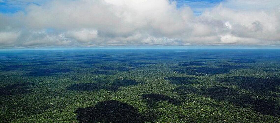 Iniciativa Amazônia 4.0 apresenta a bioeconomia como alternativa ao desmatamento