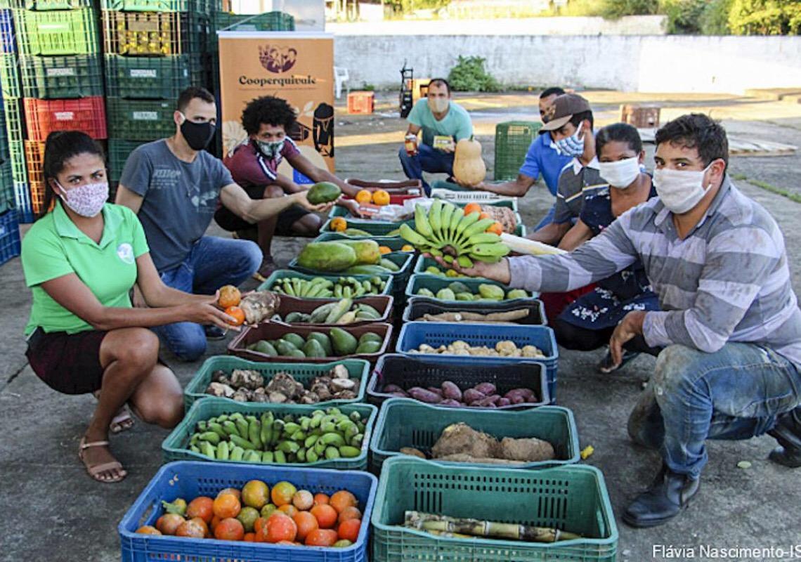 Quilombolas do Vale do Ribeira doaram 249 toneladas de alimentos desde o início da pandemia